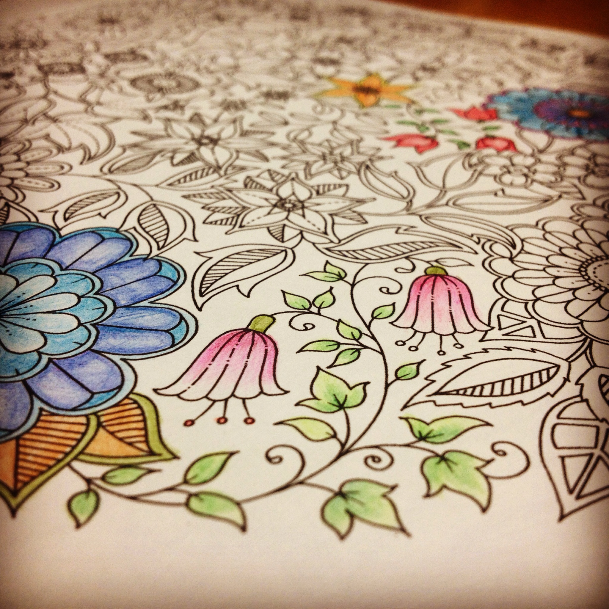 Secret Garden By Johanna Basford Is A Coloring Book Though Not The Kind We Had Fun With When Young